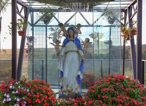 Vigília em honra a Nossa Senhora da Primavera
