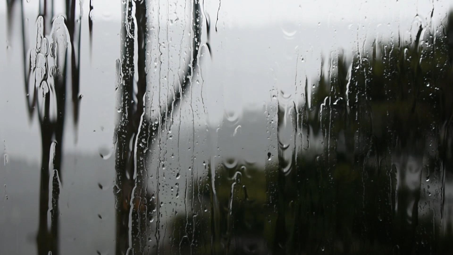 rain fourteen