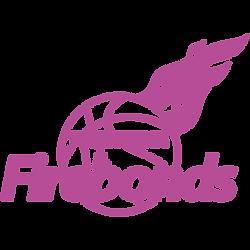 logo_firebonds_p.png