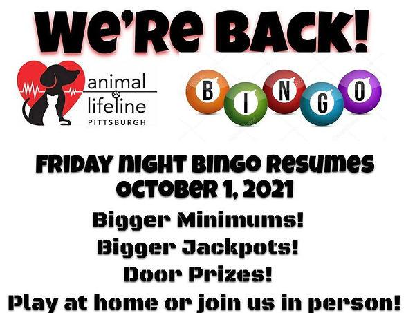 Bingo Back October.jpeg