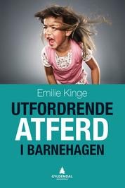 Utfordrende-atferd-i-barnehagen_productimage.jpg