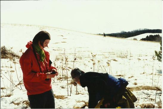Stonepatch - Winter 22.jpeg