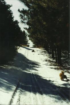 Stonepatch - Winter 19.jpeg