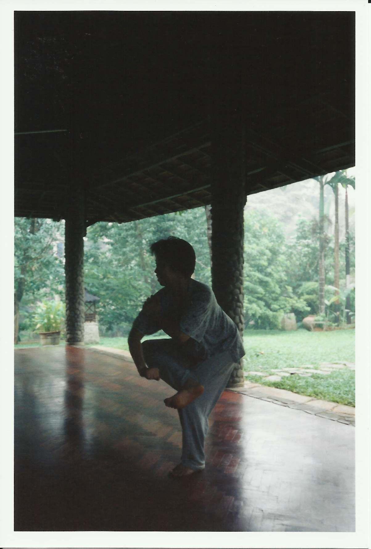 Maxine Heppner - North of Java