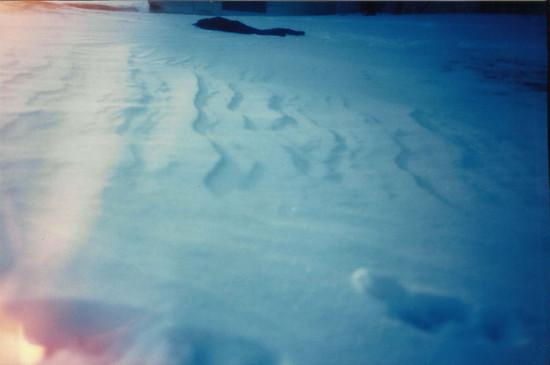 Stonepatch - Winter 28.jpeg