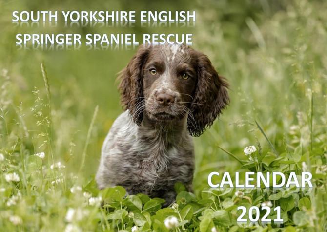 SYESSR 2021 Calendar