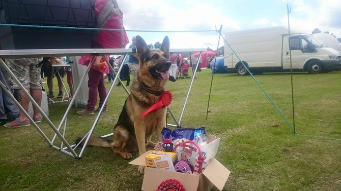 Dog show and walk 27th and 28th May