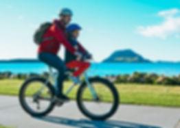 bike+seat+kids.jpeg