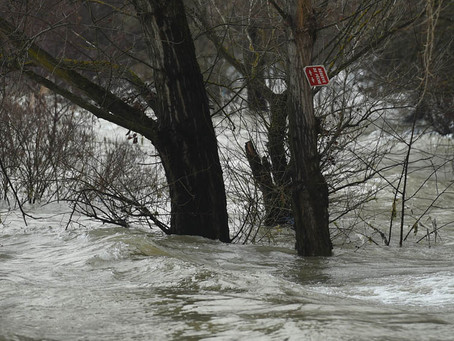 Environnement - Le Rhône en crue