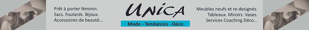 UNICA_Bandeau Vienne Online.jpg