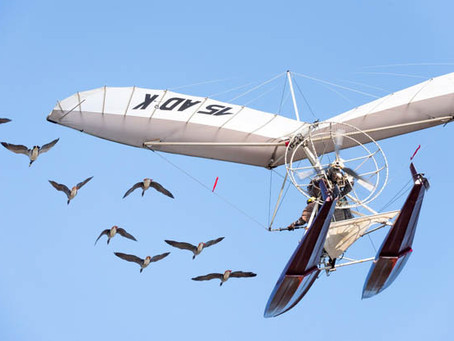 Ciné d'Or – Le film « Donne-moi des ailes » à l'affiche
