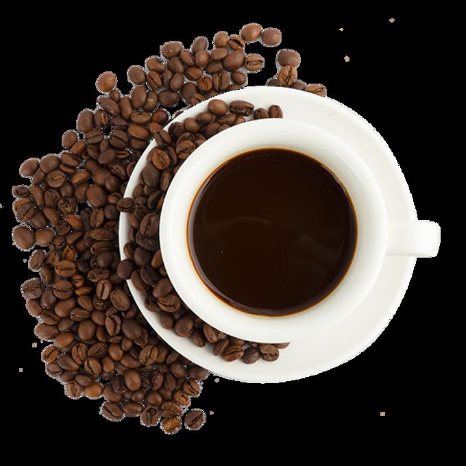 cafe-soral-vienne.png