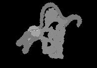 spinosaurus-01.png