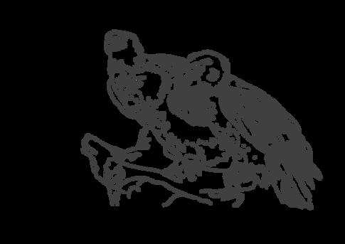 Drei Adler | zum Download