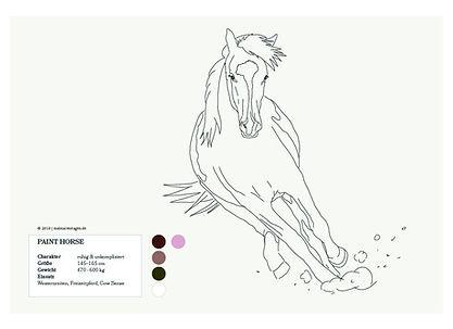 painthorse_01_factbox-01.jpg