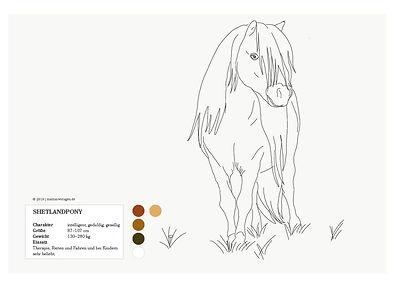 shetland_pony_01_factbox-01.jpg