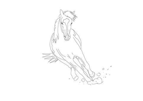 Paint Horse | zum Download