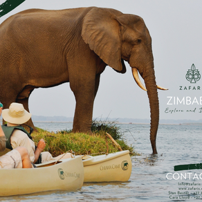 ZIMBABWE: Explore & Discover