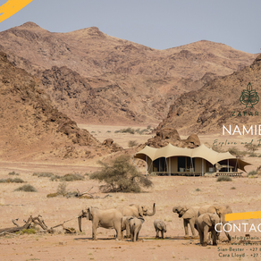 NAMIBIA: Explore & Discover