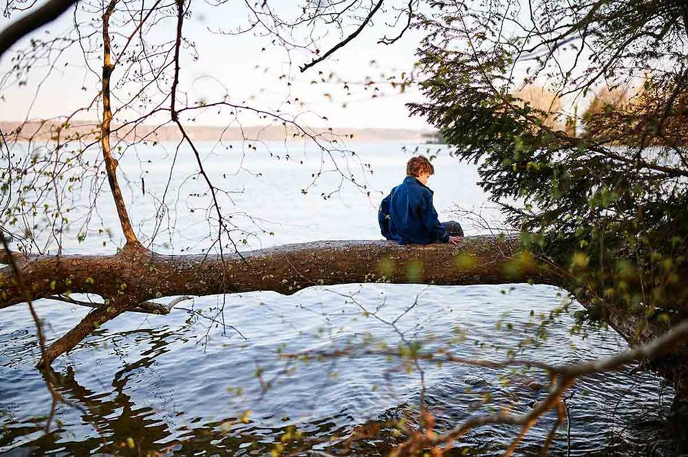 Familienausflug zum Starnberger See in Pöcking am Seeuferweg bei München - Baum