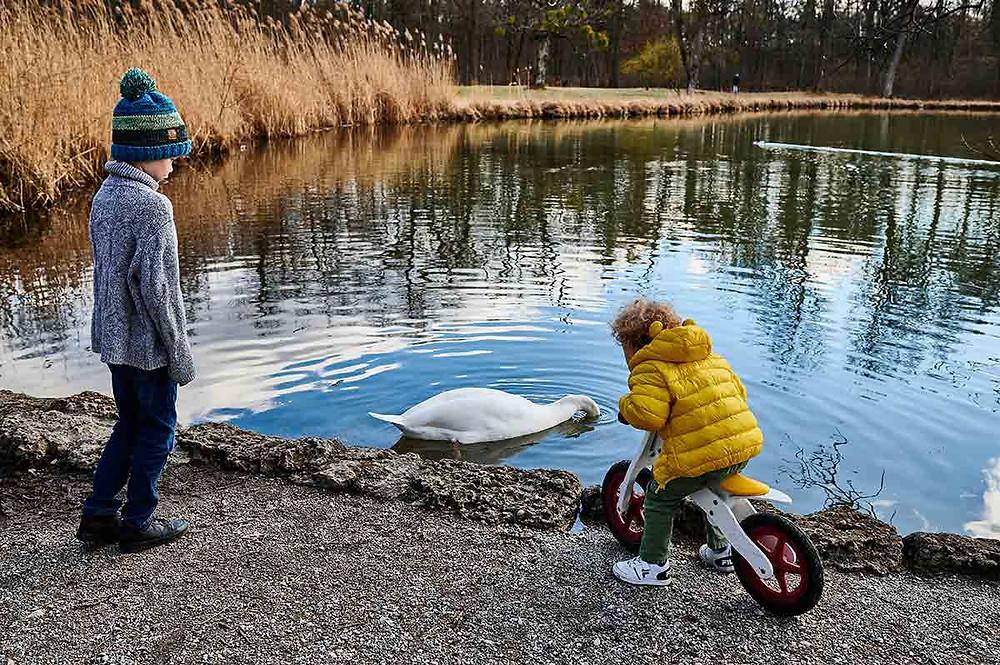 Schlosspark Nymphenburg in München Pagodenburger See kleiner See