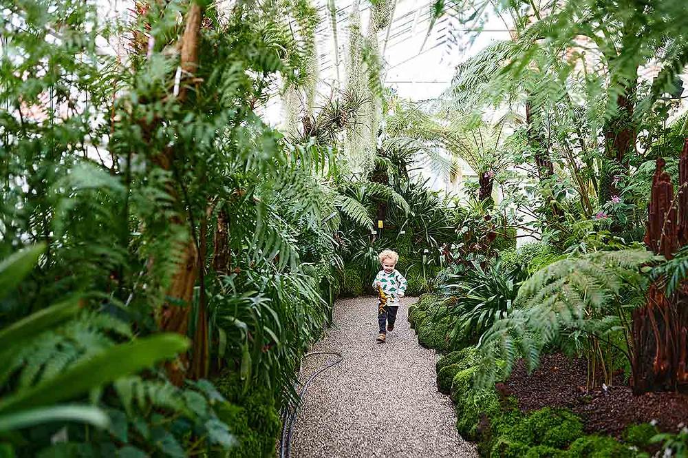 Gewächshaus Botanischer Garten München