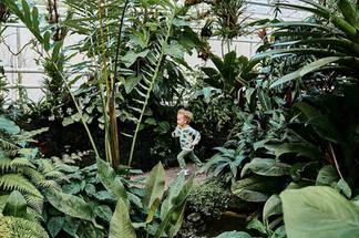 botanischer-garten-muenchen-15.jpg