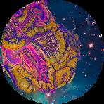 CNT-rond-espace.png