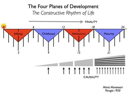 Los 4 planos del desarrollo.