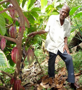 cocoa farmer_edited_edited.jpg