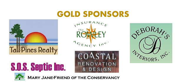Thank You Gold & Silver Sponsor_edited.j
