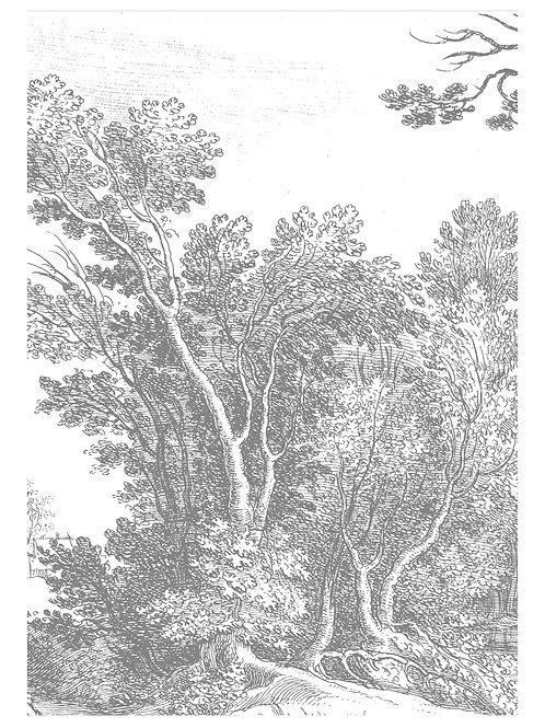 Fotobehang Engraved Landscapes V - WP-316