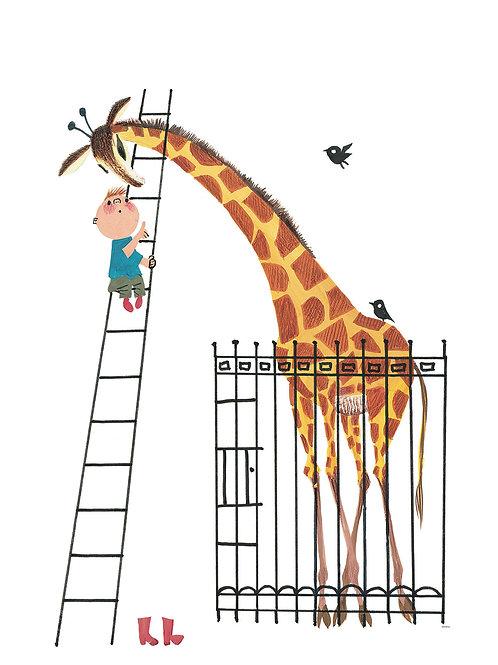 Fotobehang Giraffe - WS-040