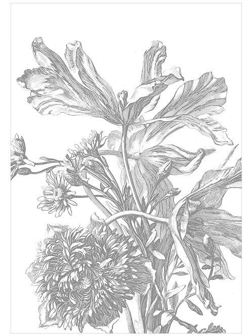 Fotobehang Engraved Flowers - WP-669