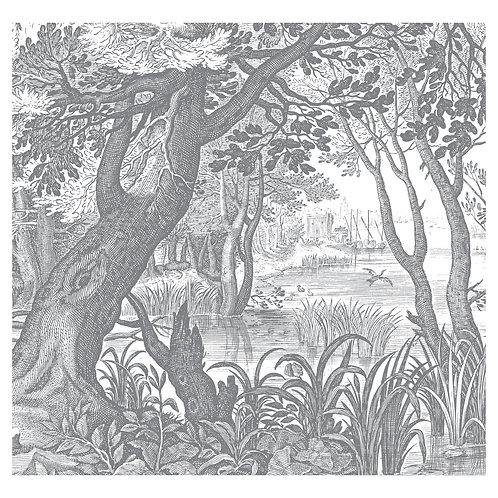 Fotobehang Engraved Landscapes lll - WP-631