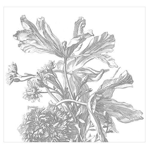Fotobehang Engraved Flowers - WP-671