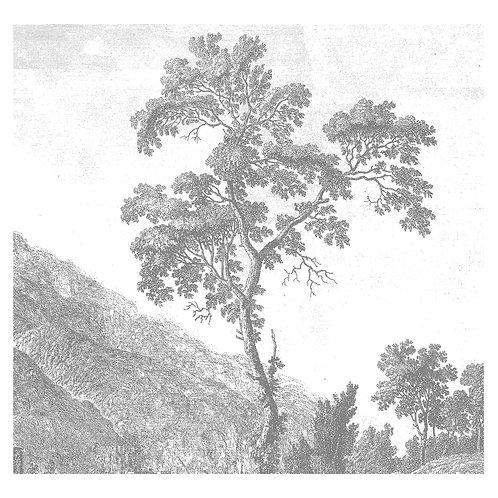 Fotobehang Engraved Landscapes l - WP-317