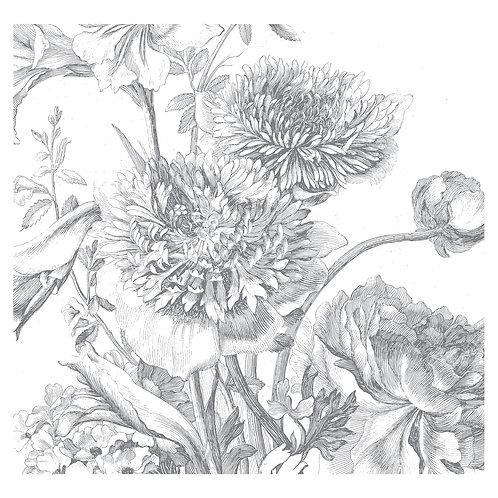 Fotobehang Engraved Flowers lV - WP-334