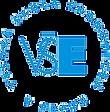 logo - VŠE - Vysoká škola ekonomická Praha, reference pro: Marek Chytil / Trainex