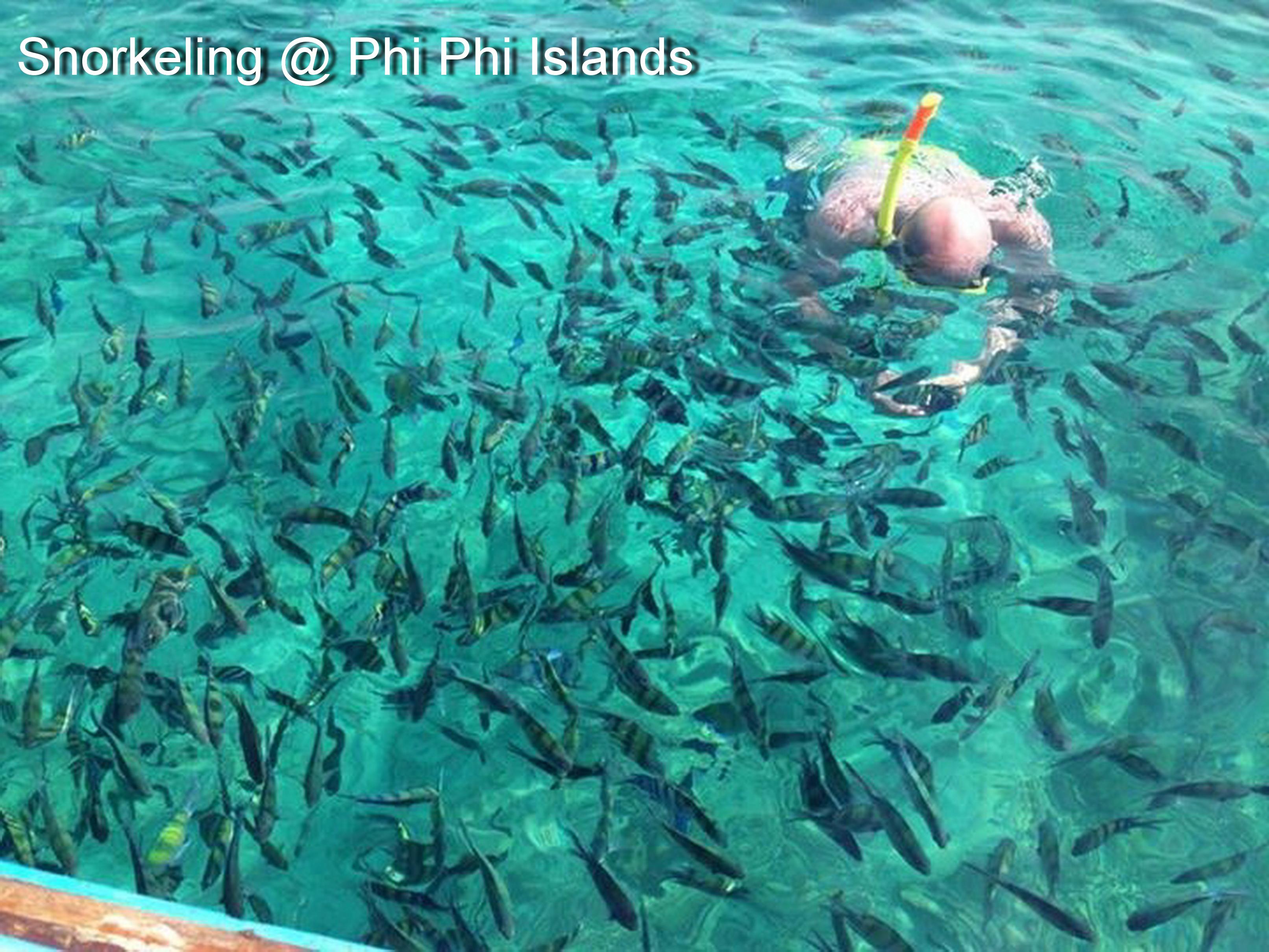 Snorkeling @ Phi Phi Islands2