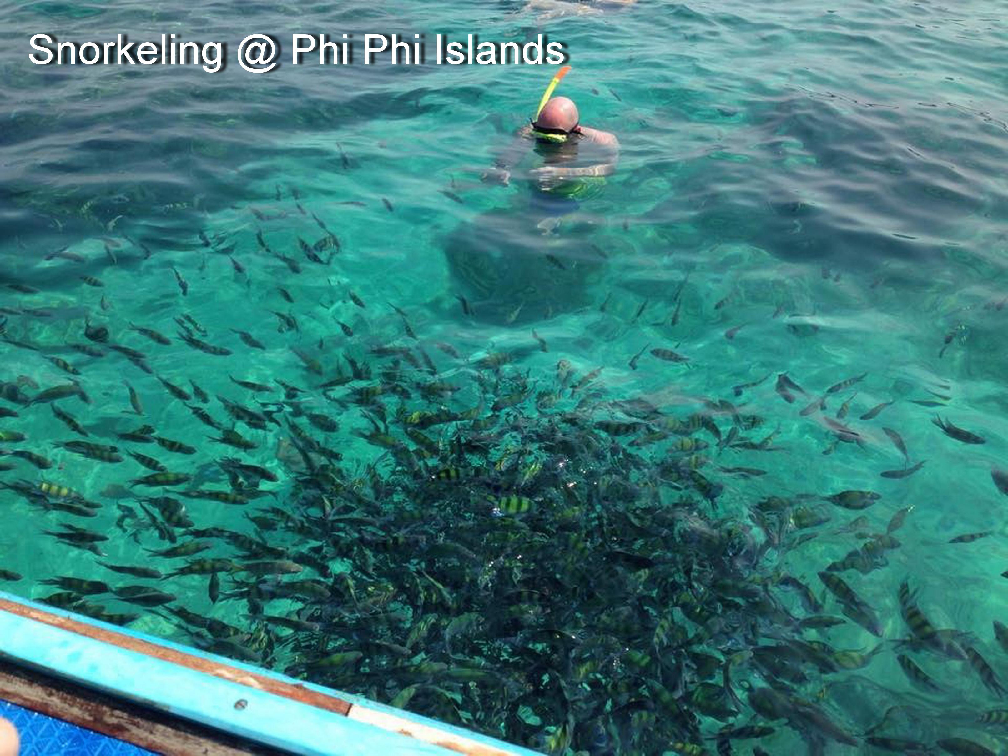 Snorkeling @ Phi Phi Islands