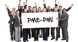 PME-PMI1
