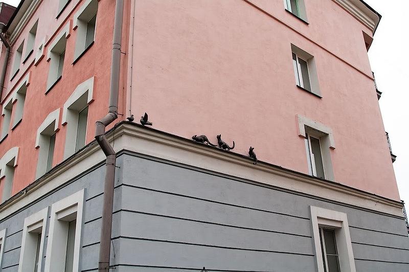 Кошки, охотящиеся на голубей