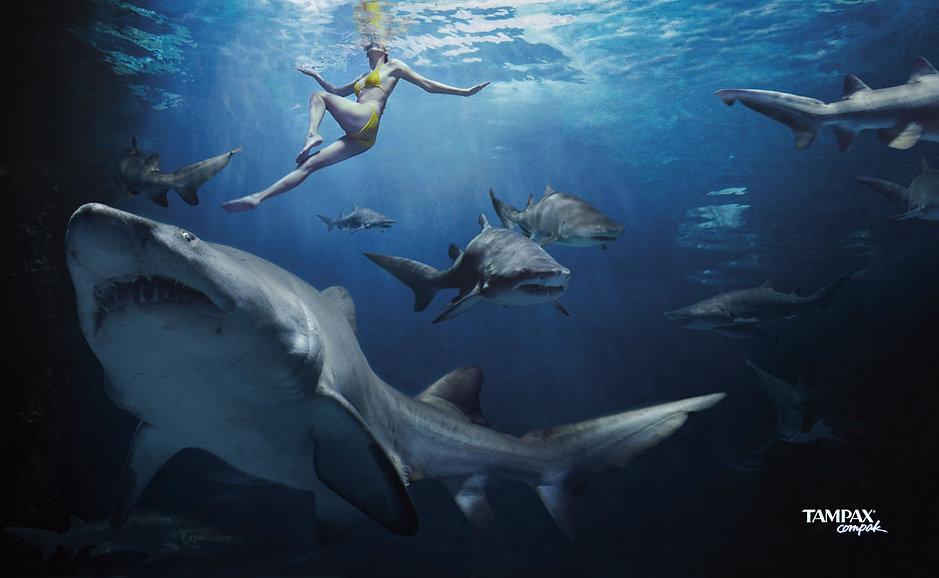 tampax-requins.jpg