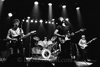 Talking Heads Live