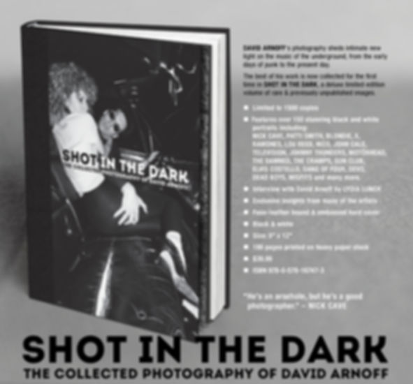 Shot in the Dark photography David Arnoff