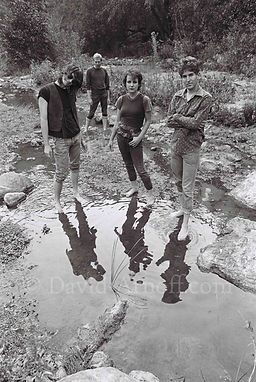 Dream Syndicate Riverbed