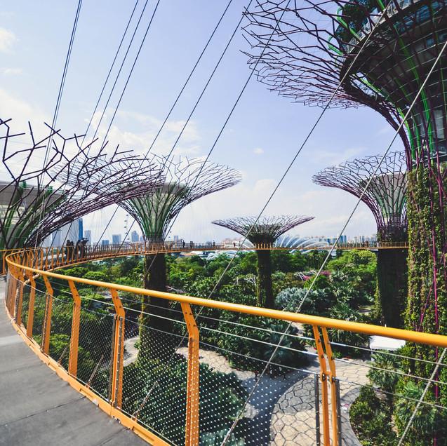 Singapore (5)-49.jpg
