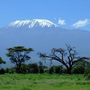kilimanjaro-1025146_1920 KENYA-49.jpg