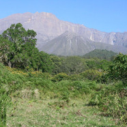 Arusha - The view into Meru Crater from
